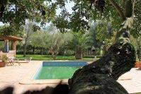 malle_pool