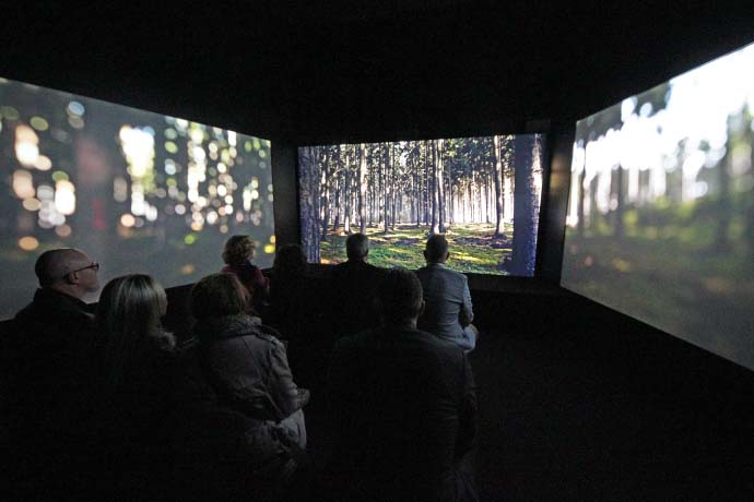 expo 8K Projection wald